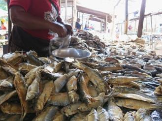 Es gibt nicht viel Fleisch zu kaufen - dafür umso mehr Fisch, der mit Salz und Chili konserviert wird. Zu kleineren Flüssen ist es nicht weit. Und der große Kongo-Fluss ist nur 80 Kilometer entfernt. Und dort legen auch Schiffe mit Fischen aus dem Ozean an