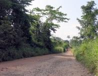 Die teilweise etwas holprige Piste von Boma nach Kangu