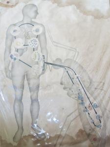 Die Riesenmoskito, die dem Doktor die Lektion seines Lebens erteilte